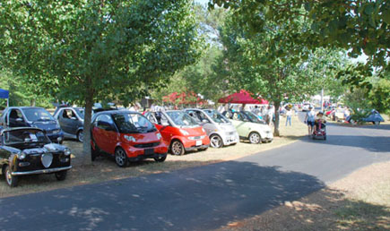 The Smart Cars were the largest vehicles at the microcar festival in Georgia